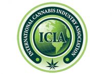 International Cannabis  Industry Association