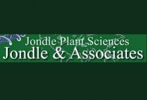 Jondle & Associates P.C.