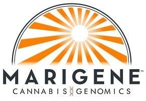 Marigene