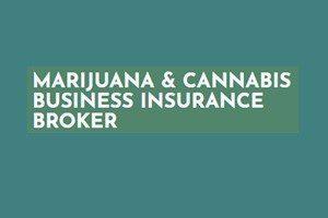 Mark Strauss – Marijuana Business Insurance Broker