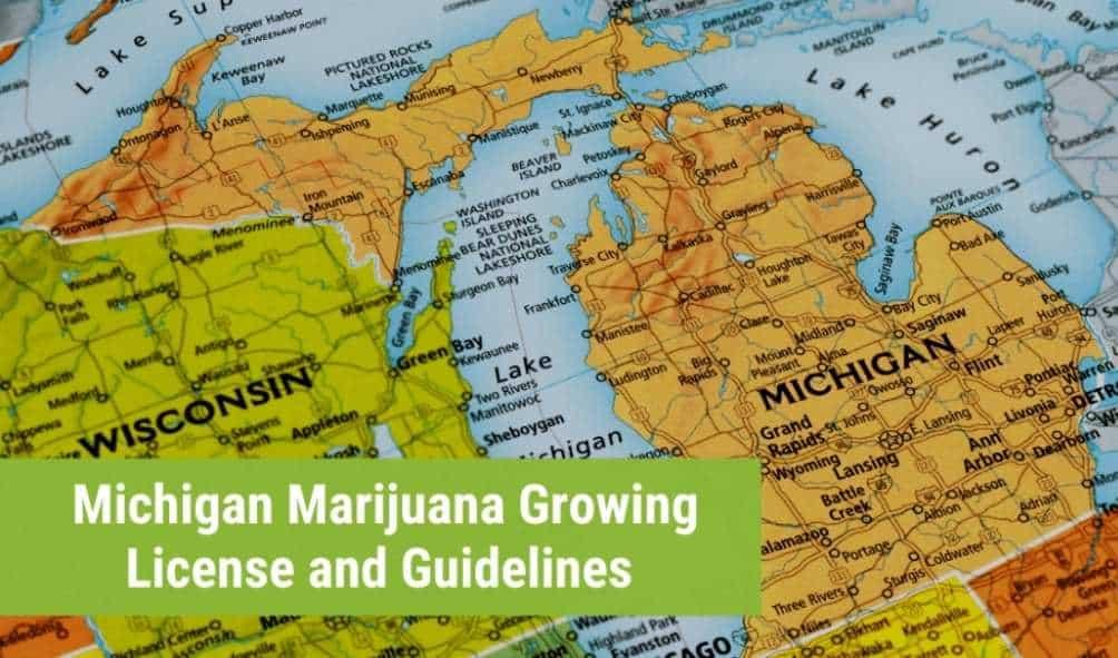 Michigan marijuana growing license
