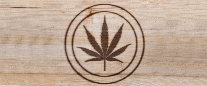 Top Cannabis Brands Created and Promoted by Celebrities