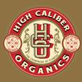 HighCaliber Logo 100x100 1