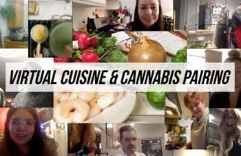 virtual cannabis dinner pairings